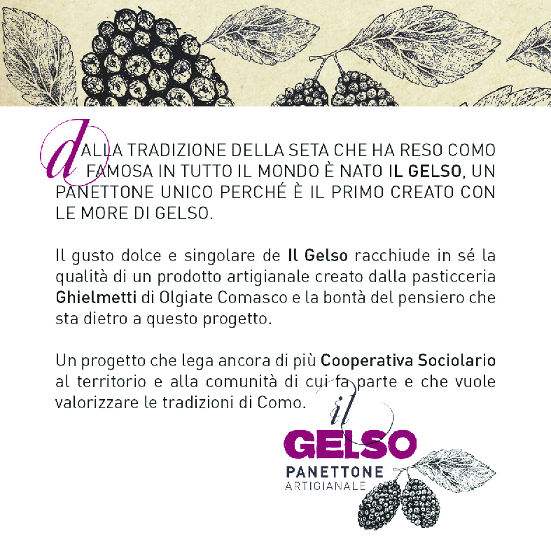 panettone il gelso 2